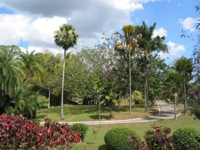 IMG_7327 Botanical Garden (good) (1)