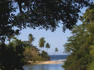 IMG_7421 estuary, palms & sea (+)