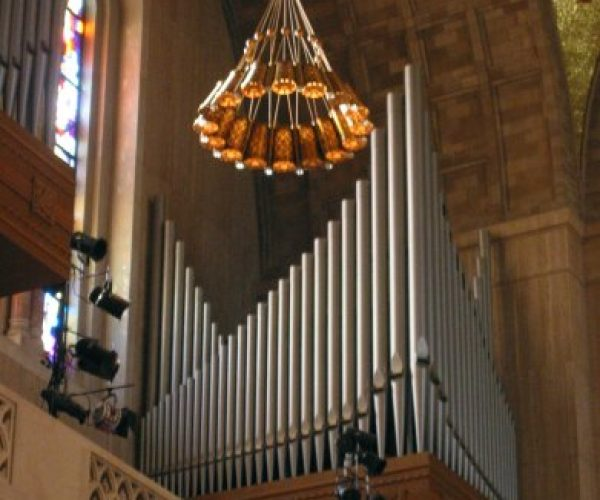 IMG_8219 organ pipes and hanging light