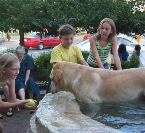IMG_8408 dog fountain ball kids (ok)