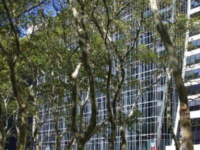 img 0091D bldg through Bryant Park trees